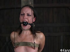 Hailey Young is now tied up and her pussy is procurement put emphasize hard torture!