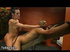 Large udders transsexual fuck guy up the arse tied up to a wooden restraints