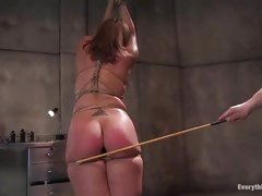 Tied up sex slave acquires her butt plugged and a-hole whipped until it's raw