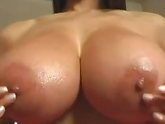 Great Tits-