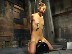 Emaciated Kat gets humiliated increased by galvanized connected with subjection video